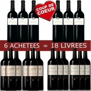6-18-pack-b-magrez-bordeaux-vin-rouge